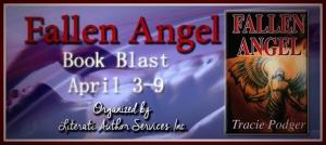 Fallen Angel Banner RD